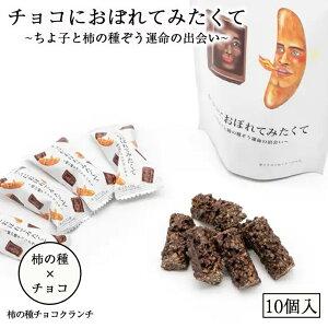 チョコにおぼれてみたくて 10個入 送料無料 北海道 チョコ お菓子 洋菓子 お土産 ギフト プレゼント 柿の種 チョコレートクッキー 父の日