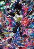 ドラゴンボールヒーローズGDM9弾UR(シークレットアルティメットレア)黒仮面のサイヤ人HGD9-SEC2【中古】