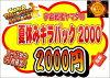 ドラゴンボールヒーローズ夏休みキラパック20002018期間限定数量限定!全5枚中UR1枚確定!福袋(クジ)オリパ