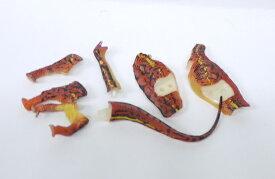 UHA味覚糖 チョコラザウルス 恐竜・古代生物フィギュアコレクション DINOTALES 2002 恐竜博限定 SP-06 セイスモサウルス【中古】