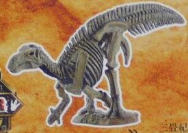 フルタ チョコエッグ 恐竜 DINOSAUR 08 イグアノドン(骨格)【中古】
