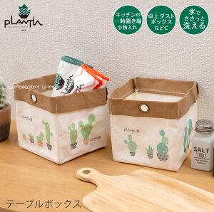 SDSテーブルボックス 1個入り:W13×D13×H14cm サボ(グリーン/オレンジ)[ エスディーエス プランティア 収納 小物入れ 卓上ゴミ箱 サボテン カクタス ]20AW