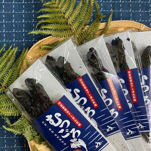 むつごろう丸干し 2匹入り 5袋セット 佐賀県 有明海 特産品 珍味 おつまみ