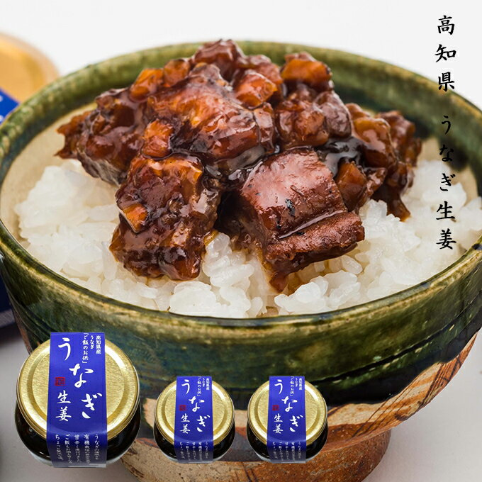 うなぎ生姜 3個セット 高知県産うなぎと黄金生姜を使用したご飯によく合う逸品!お茶漬けもおすすめ!