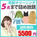 クリーニング 【送料無料】 詰め放題 「BOX-5」 5点まで5500円 詰め放題 宅配 洗濯 衣替え 宅配バッグ せんたく まとめて 通常しみ抜き…