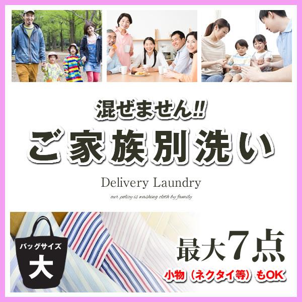 【7点まで詰め放題!】宅配クリーニングサービス、ビックバッグコース+簡易シミ抜き無料 【送料無料 関東地方】