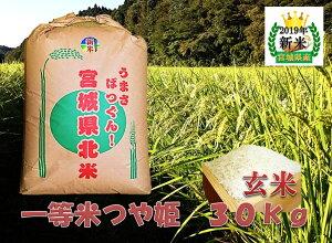 米 宮城県産 つや姫 玄米30kg
