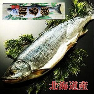 北海道産 銀毛 新巻鮭1本化粧箱入れ(約2kg)