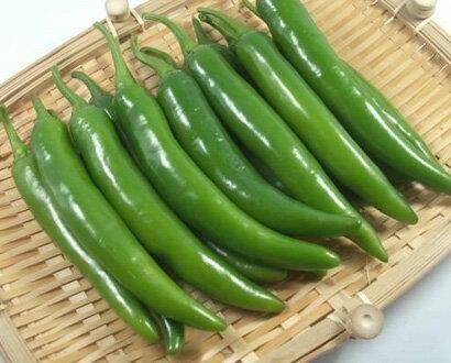 辛い青唐辛子1kg (韓国食品、野菜)