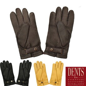 【3 COLORS】DENTS(デンツ) LAETHER GLOVES(レザーグローブ/革手袋) PECCARY/CASHMERE(ペッカリー/カシミア)