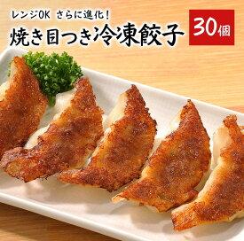 冷凍食品 レンジでも 餃子 30個【1個 約15g】 送料別 味の素