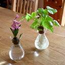 水栽培 花瓶 フラワーポット TE094 フラワーベース シンプル おしゃれ ガラス ポット ヒヤシンス ムスカリ サボテン …