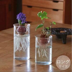 水栽培 花瓶 BULB VASE バルブベース ロングサイズ フラワーベース シンプル おしゃれ ガラス ポット ヒヤシンス ムスカリ サボテン ハイドロカルチャー スパイス 花器 種 スポンジ セット 液肥