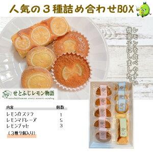【こだわりギフト】せとふじレモンの焼き菓子 カステラ・マドレーヌ・ブッセのセット 1つ1つ手作りです お土産・大切な方への贈り物に♪ 全国送料・ギフト包装・のし対応・外箱梱