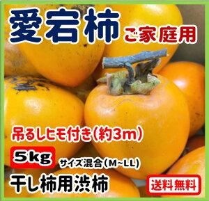 【ご予約受付中】岡山県産♪ 干し柿 用 渋柿 愛宕柿 あたご柿 約5kg キズあり 訳あり品 MからLサイズ混合 吊るしヒモ付き(約3m)なのでお手軽です!
