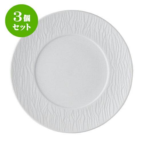 3個セット デリカウェア SAZANAMI27cmディナー [27.7 x 2.8cm] 【 料亭 旅館 和食器 飲食店 業務用】