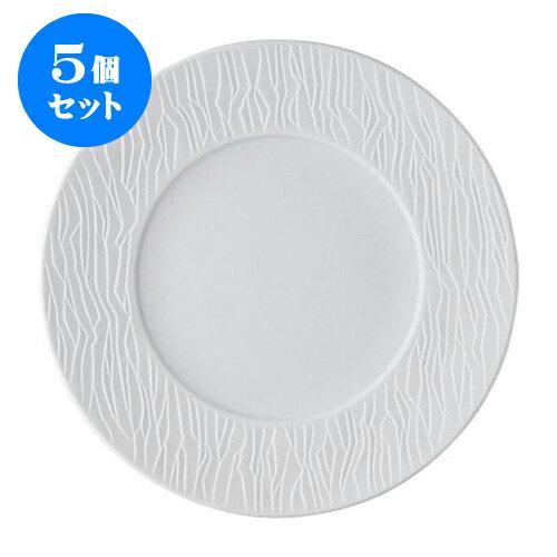 5個セット デリカウェア SAZANAMIビスク27cmディナー [27.7 x 2.8cm] 【 料亭 旅館 和食器 飲食店 業務用】