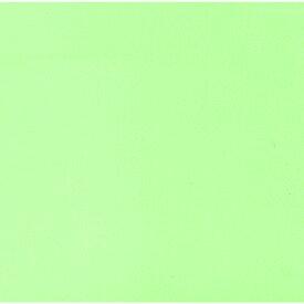 ☆ 敷紙 ☆ 色彩耐油紙TA-C12GN グリーン 4寸 100枚入 [ 12cm角 ] 【 飲食店 定食屋 旅館 和食器 業務用 】
