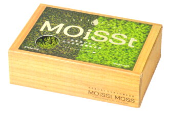 Moist Moss Moss growing Kit