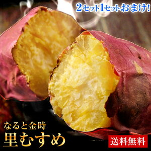 なると金時 里むすめ 1kg サイズ不選別 訳あり 送料無料 芋 サツマイモ さつまいも 徳島県 鳴門市産 お取り寄せ 7-14営業日以内に出荷 土日祝除く