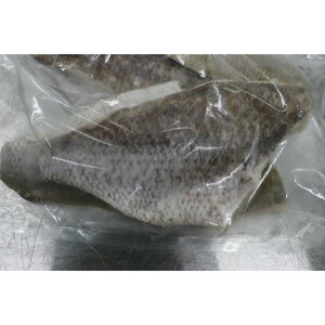 瀬戸内海産 天然真鯛フィレー151〜200gサイズ