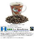 【お一人様1個限り】2017新豆・フルカフェイン・オーダーメイド・無農薬 グァテマラ サンマルコス ラ・ベンディシ…