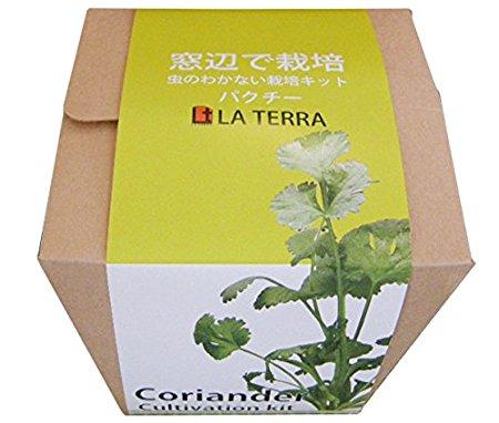 窓辺で栽培 虫のわかない栽培キット クリスタルグレイン「パクチー」