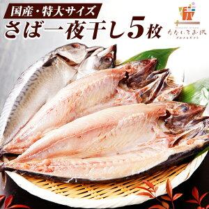 国産 特大サイズ さば一夜干し 5枚 鯖 送料無料 ご飯のお供 海鮮 ポイント消化 瞬干 サバ 開き 肉厚 大判 干物 焼き魚 ギフト プレゼント 2020 食品