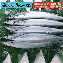 三陸産 鮮 秋刀魚 1尾130g以上保証 総重量1.5kg(10〜12尾入が目安となります) 食べ方ガイド付き さんま サンマ