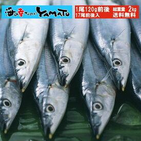 三陸産 鮮 秋刀魚 1尾120g前後 総重量2kg(17尾前後入が目安となります) 食べ方ガイド付き さんま サンマ