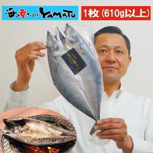 超特大 金華さば開き干し 1尾 610g以上 鯖 さば サバ 干物 ひもの