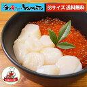 【クーポンで4,980円→2,980円!】日本最北端猿払・宗谷産!少し小粒ながら1kgに山盛り80〜100粒入り!お刺身ホタテ貝…