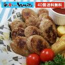 やわらか鶏肉ハンバーグミニ 1.12kg 40個入り 鳥 とりトリ 惣菜 お弁当 冷凍
