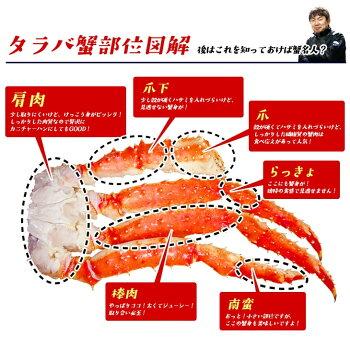 【最大3kgのカニが当たる】特大タラバ蟹1kgカニタラバガニかに蟹たらば蟹たらばかにお中元お歳暮敬老の日ギフト2kg3kg5kg