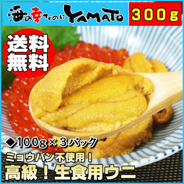 天然生ウニ100g×3パック ミョウバン不使用完全無添加 2014年グルメ大賞受賞 うに 雲丹 海鮮丼 寿司 あす楽