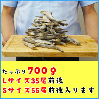 訳あり子持ちシシャモ一夜干したっぷり700gししゃも柳葉魚干物【クーポンで580円OFF】あす楽