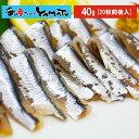 瀬戸内海広島産 お刺身小いわし 40gに20枚前後入り 鰯 イワシ かたくちいわし 鮮魚