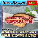 訳あり 鮭の味噌漬け焼き 30g x5切入り 三陸産 冷凍食品 簡単調理 さけ 和食 弁当