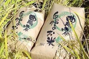 新米刈りたて 令和2年度産 農家直送 新潟県産 玄米 コシヒカリ 30kg 一等米 減農薬米 新潟市西蒲区産 旧巻町