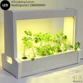 Akarina06(ホワイト)LED水耕栽培器