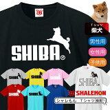 柴犬おもしろtシャツ