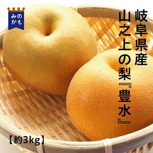 【やま農園の梨】豊水梨 3kg箱 岐阜県 美濃加茂市 山之上 梨 なしナシ 農家直送フルーツ 贈答用にも 送料無料