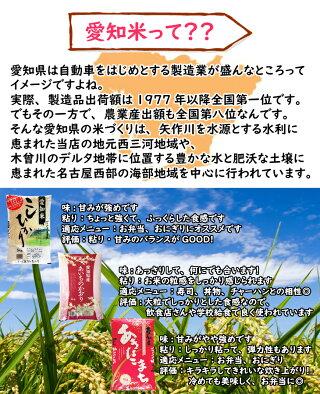 新米10kgこしひかり5kg×2愛知県産平成30年産送料無料沖縄・北海道などをのぞくお米白米