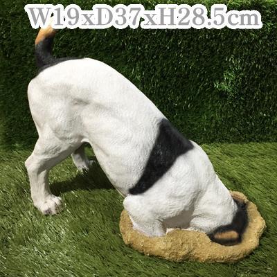 ジャックラッセルテリア 穴掘りモグ【オーナメント 犬 大型 置物】【2017regin】【戌年】