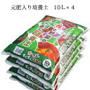 培養土 セット 40l 花 野菜 オリジナル 元肥入り バットグアノ 【花と野菜のすくすく培養土10L×4袋セット】