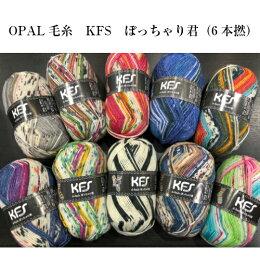 opal毛糸 ぽっちゃり君シリーズ 6本撚り 単純な編み方で可愛い柄が編める毛糸