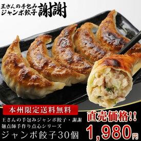 ≪本州限定送料無料≫王さんの手包みジャンボ餃子30個