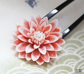 つまみ細工のような♪大輪のグラデーション花*本真珠 かんざし【菊 ダリア 和装 髪飾り 華やか ピンク】【ラッキーシール対応】