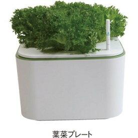 SANEI 三栄水栓 アクア栽培(イエナ)EC30S ie・na 水耕栽培