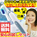 電動歯ブラシ 音波式歯ブラシ 送料無料 スマートソニック 音波歯ブラシ 音波 歯ブラシ 電動歯ぶらし 歯磨き歯みがき ソニックビューテ…